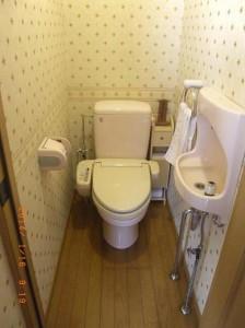 解体前。まだ使える!ウォッシュレットだけはもうひとつのトイレに付け替えさせていただきました。